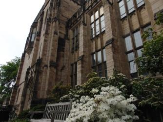 Yale10