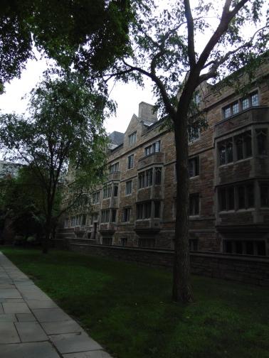 Yale11