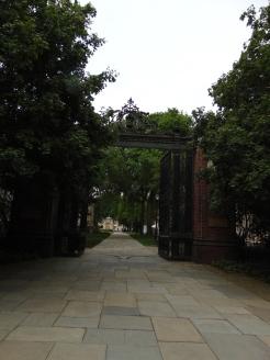 Yale12