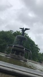 Central Park11